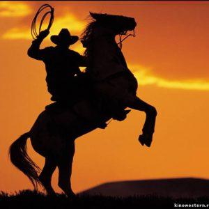Костюмы и жилетки для ковбоев
